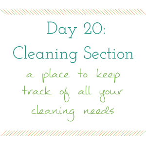 Day 20 of 31 days to a Clean and Organized Kitchen: ScatteredSquirrel.com