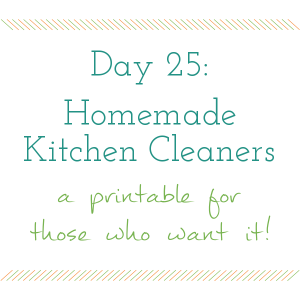 Day 25 of 31 days to a Clean and Organized Kitchen: ScatteredSquirrel.com