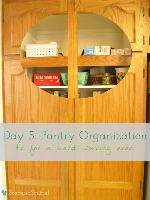Day 5 of 31 days to a Clean and Organized Kitchen: ScatteredSquirrel.com