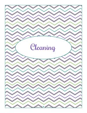 Cleaning section divider for kitchen binder : ScatteredSquirrel.com