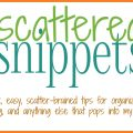 A series of small posts about organizing, cleaning, declutter and home mangement posts. | ScatteredSquirrel.com