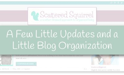 A little freshening up and changing things around a bit, and now the blog is a little more organized. |ScatteredSquirrel.com