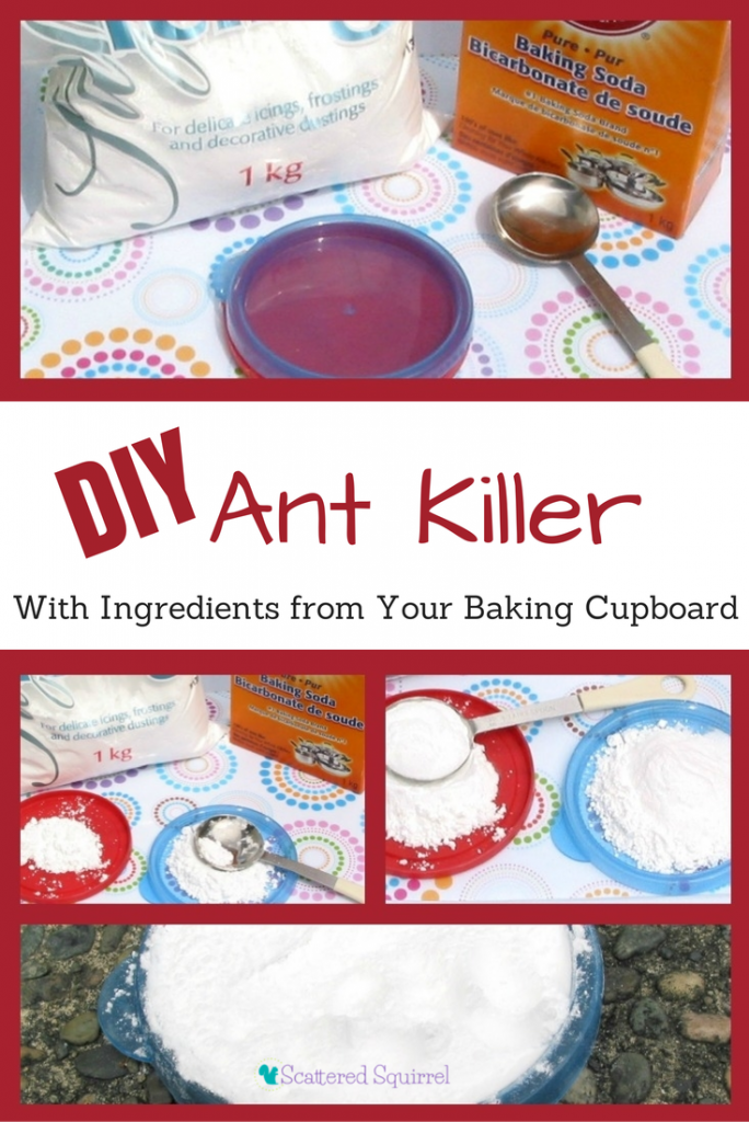 Say 'So Long' to Ants with this Easy DIY Ant Killer - Scattered ...