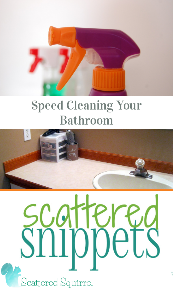 {Scattered Snippets} Speed Cleaning your Bathroom is not only a great way to keep your bathroom sparkling, but it can save you a ton of time when it comes time to deep clean it!