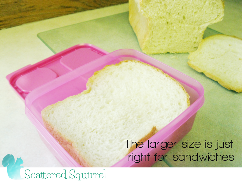 The larger size is just right for sandwhiches or other main dishes.