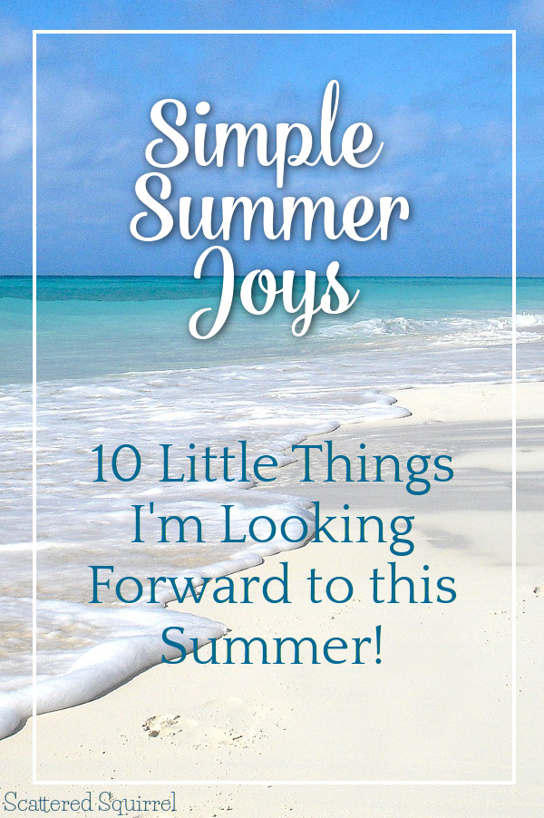 So often we focus on the big things and forget about the little one. Today I'm celebrating my top 10 Simple Summer Joys.