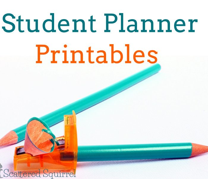 Getting Ready for Back to School-Student Planner Printables