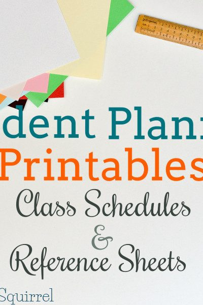 Highschool and College students have to keep track of a lot of information. These class schedule and reference sheets printables will make a great addition to a student planner.