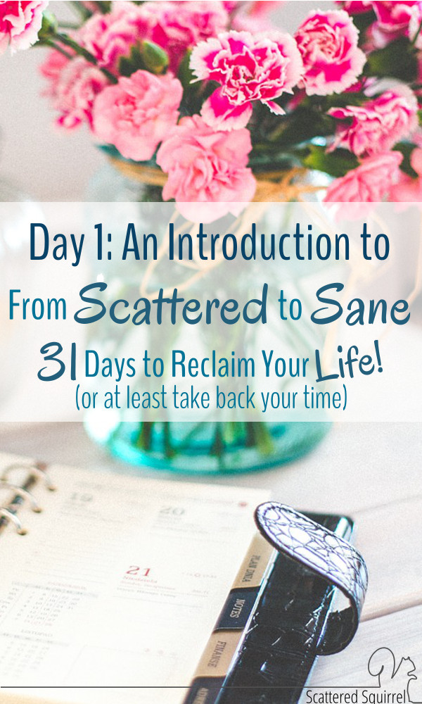 I'd love it if you would join me for the From Scattered to Sane series. Each day in October I'll be sharing new tips, tools, ideas and motivations as part of my 31 Days to Reclaim Your Life! (or at least take back your time) series. Stop on by and check them out.