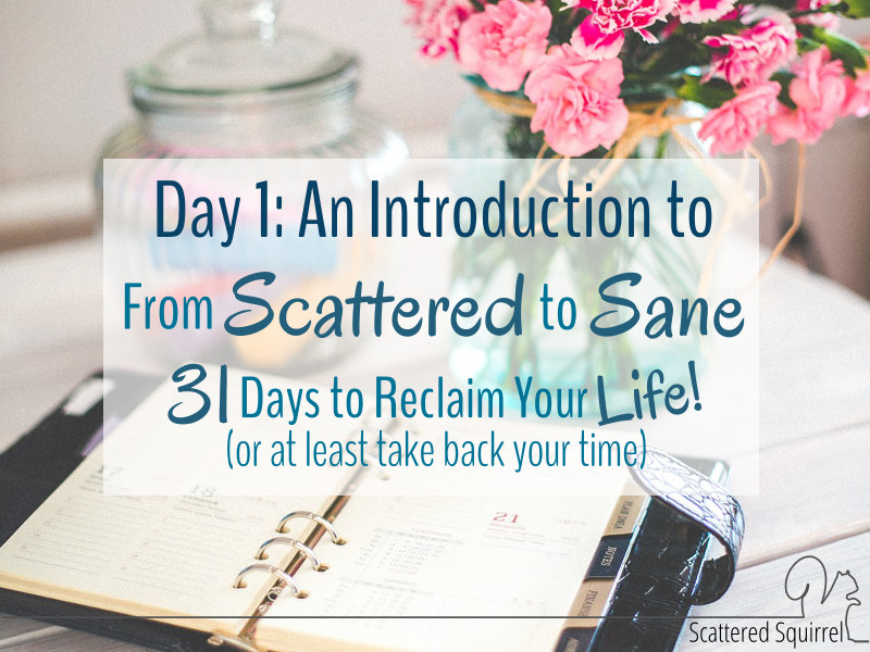 From Scattered to Sane: 31 Days to Reclaim Your Life!