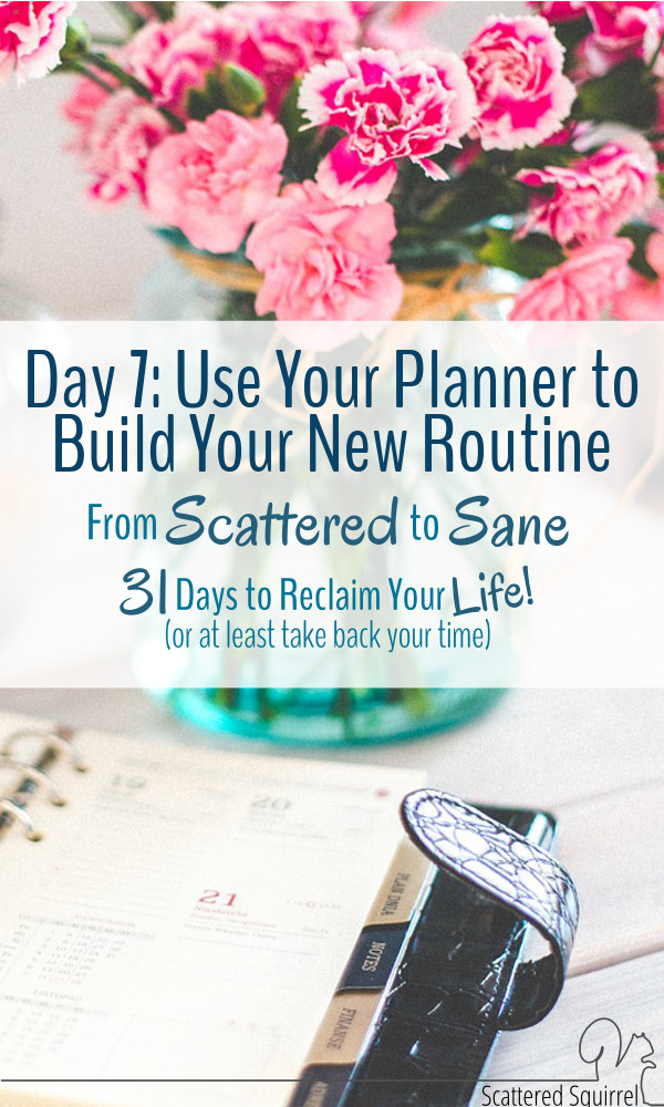 When building a new routine, a planner can be the best tool to help keep you on track and accountable.