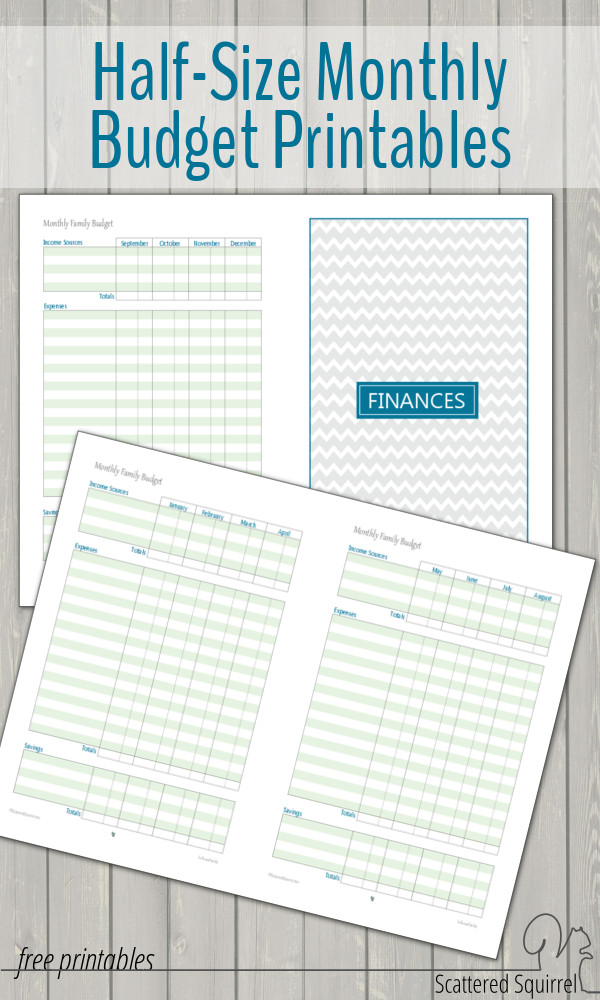 Half-Size Monthly Family Budget Printables