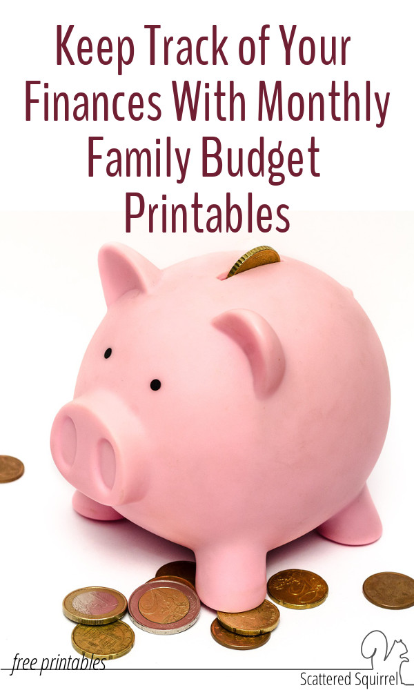 Monthly family budget printables make it easy to track your finances every month of the year. That way you can see at a glance what is coming in and what you're spending. track spending trends, and better understand your financial standing.