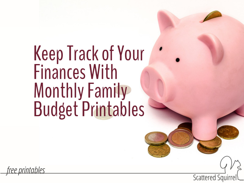 Keep track of your finance with these handy monthly family budget printables