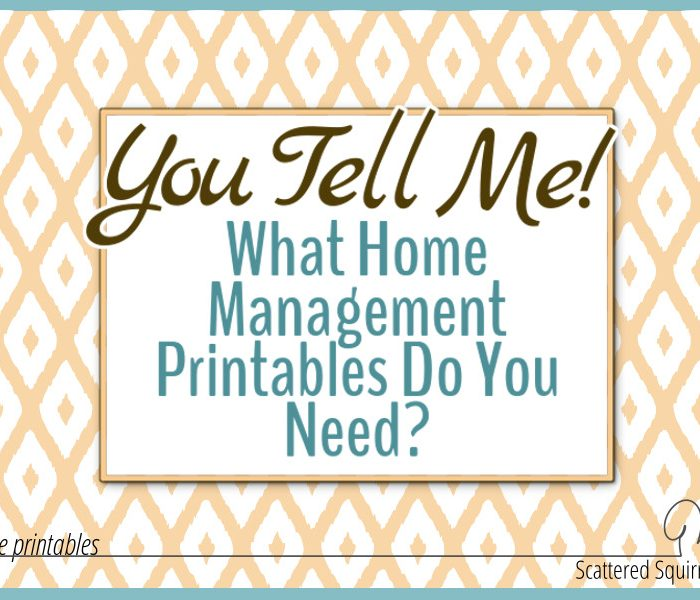 You Tell Me!  What Home Management Printables Do You Need?