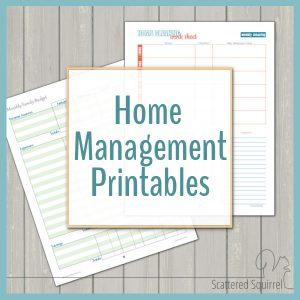 Managing home and family can be a bit of a chore. The home management printables are sure to be a big help in keeping track of everything,