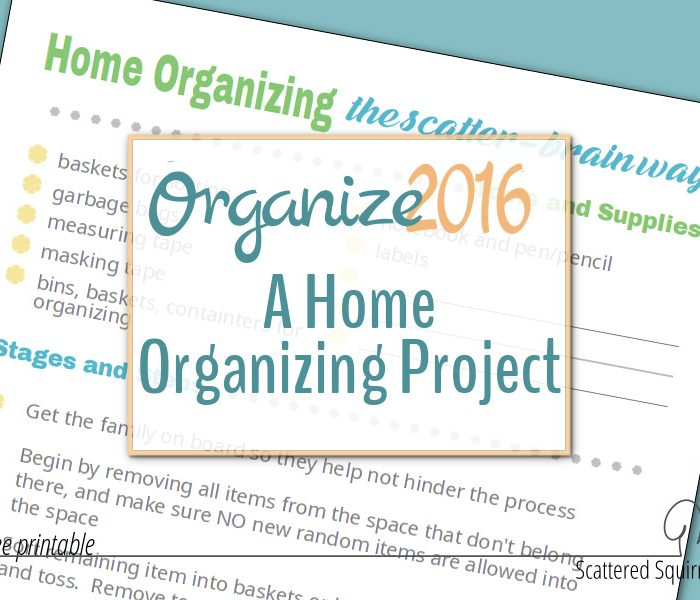 Organize 2016!  A Home Organizing Project