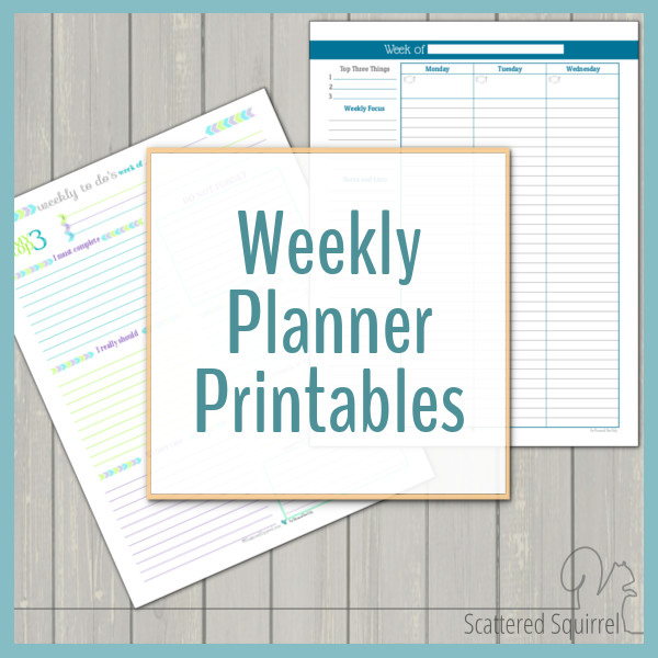 image regarding Weekly Planning Sheets named Weekly Planner Printables Person Planner