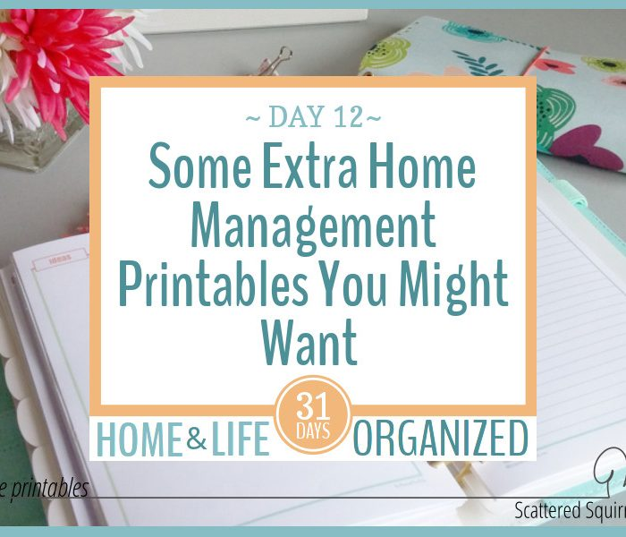 Some Extra Home Management Printables You Might Find Useful