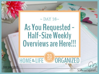 You requested them and they're finally here! Half-size weekly overview printables are a great addition to any planner.