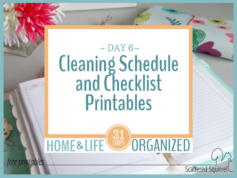 Colourful Cleaning Schedule and Checklist Printables