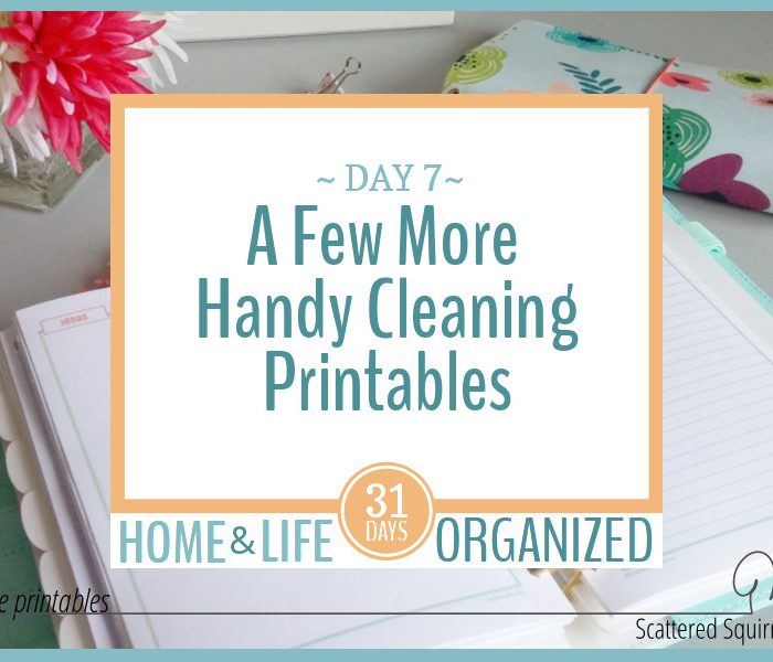 A Few Handy Cleaning Printables to Have on Hand