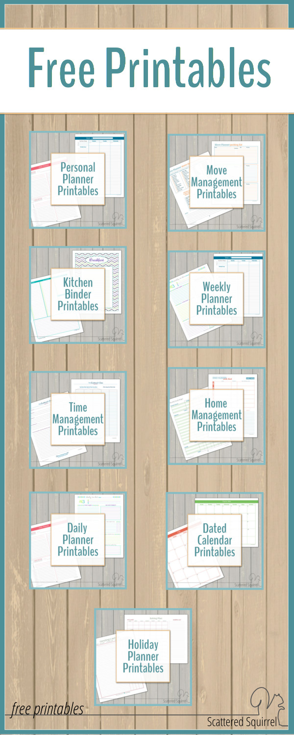 image about Free Organization Printables for College Students named No cost Printables - Scattered Squirrel
