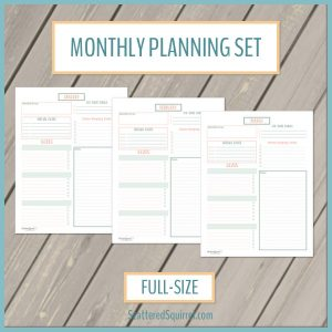 This printable sets features a planning page for each month. Choose a focus, set your goals and track special dates and tasks for each month.