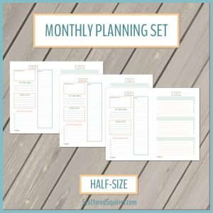 This printable sets features two half-size planning pages for each month. Choose a focus, set your goals and track special dates and tasks for each month.