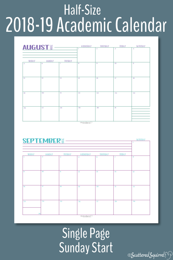 These half-size single page per month, Academic calendars are dated from August 2018 through July 2019 and feature a Sunday start day.