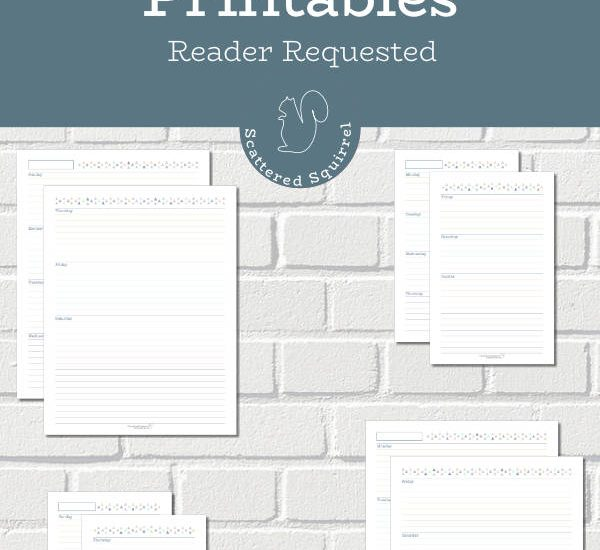 These horizontal week on two pages printables are a great addition to your planner. They come in two different sizes with your choice of a Sunday or Monday start day. The simple design allows freedom to customize them and use them in many different ways.