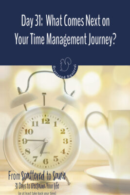 What comes next on your time management journey? Stop on by and check out these ideas for what to do now that the From Scattered to Sane series is over.
