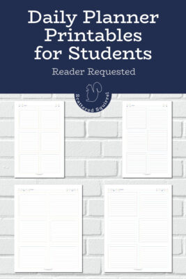 These daily planner printables for students were designed to be a versatile planning tool to help students plan and track and the things need to stay on top of.